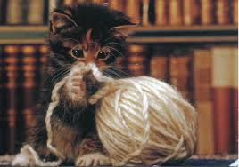 kitty_yarn_books